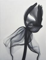 black-tullip-85-x-65-cm-2016-oil-on-canvas